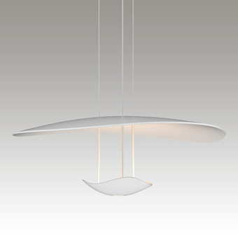 Infinity Reflections LED Pendant w/Downlight