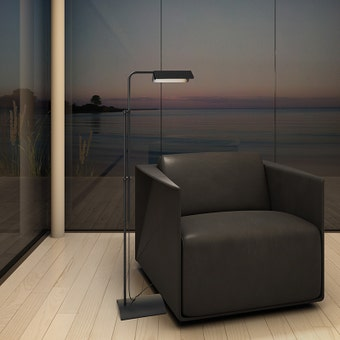 Morii LED Floor Lamp